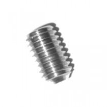 PaddLok insert screw